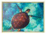 Poster von Schildkröte mit hölzernen Bilderrahmen